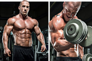 How to cycle Anapolon for Huge Muscle Growth | Anapolon-steroids com